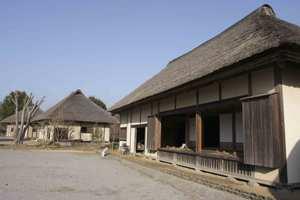 Fudokinooka