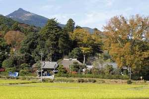 Kamiaoyagi