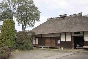Sakuraazumao