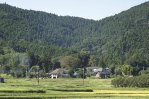 Aoyagi5