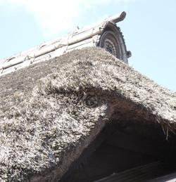 Watahikike6